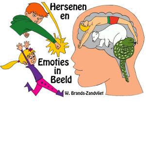 hersenenenemoties2